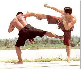 advanced muay thai techniques pdf