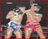 Muay Thai Fight Photos 13