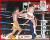 Muay Thai Fight Photos 15