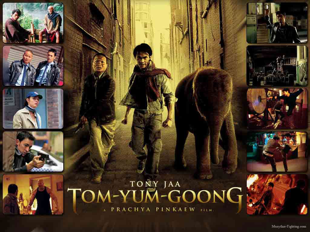 Tom Yum Goong AKA The Protector (2005) In Hindi