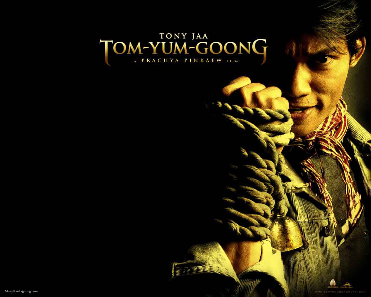 Muay Thai Wallpapers Comprehensive Styles Of Thai Boxing Wallpapers