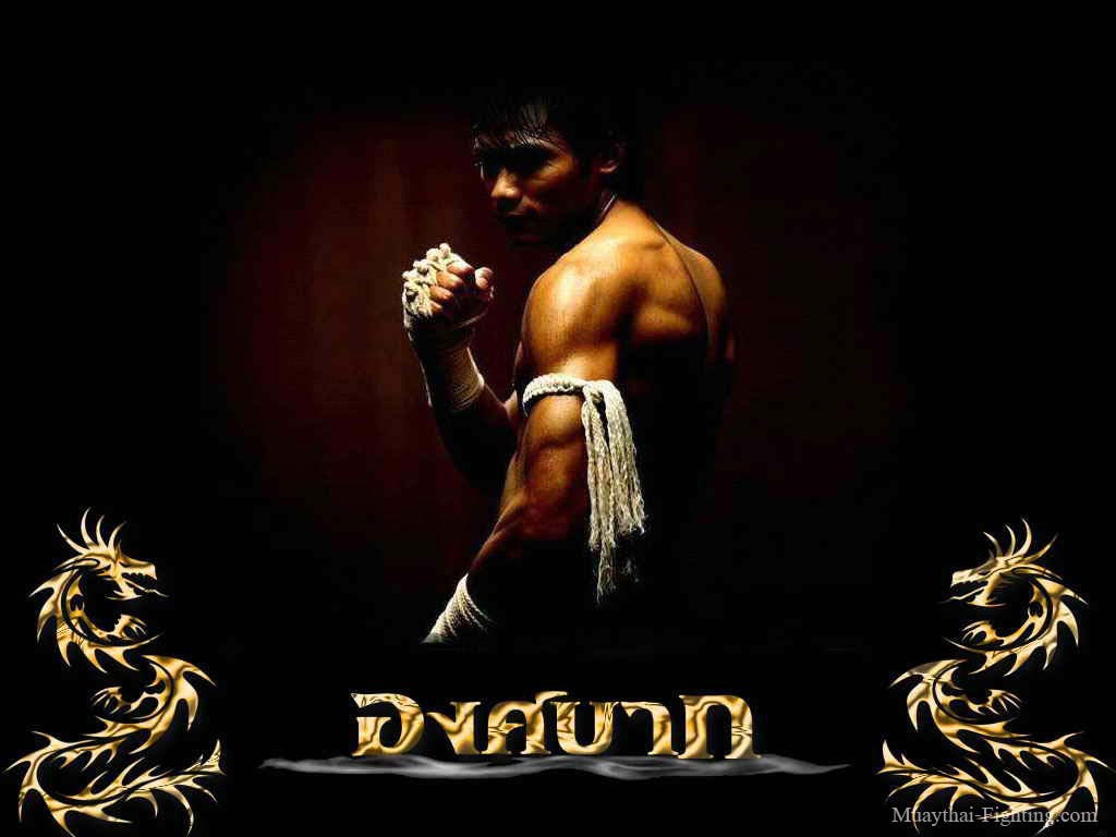 Muay thai wallpapers 55 wallpapers hd wallpapers for Thai wallpaper gallery