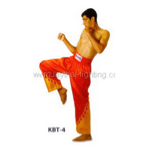 Twins Special Kickboxing Trousers KBT-4