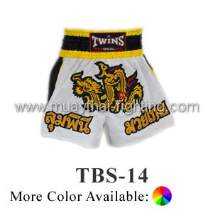 Twins Special Muay Thai Shorts Dragon TBS-14